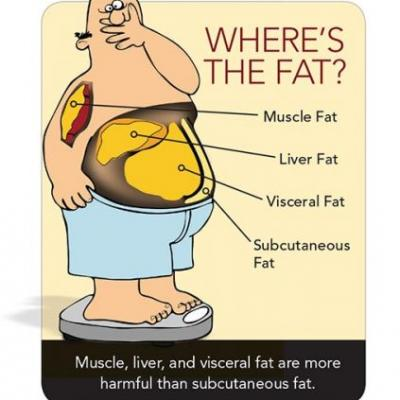 Saturated fat and added sugars aren't doing your midsection any favors