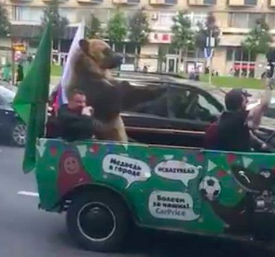 A vuvuzela-playing bear making anti-semitic gestures from the back of a Jeep is the most bizarre sight of the Russia World Cup so far