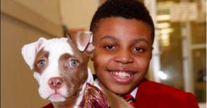 See How This 12-Year-Old Is Helping Shelter Dogs Find Homes In the Classiest Way