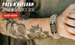 Pets and Vets Homepage Redirect