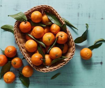 6 tips to growing mandarins almost all year round