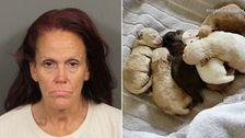 Woman Who Tossed 7 Newborn Puppies In Coachella Trash Gets Year In Jail