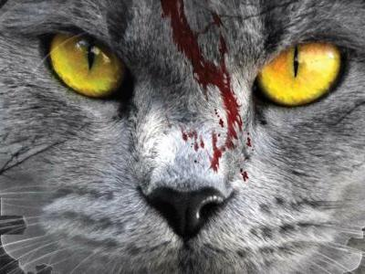 Pet Sematary Remake Synopsis Teases An 'Unfathomable Evil'