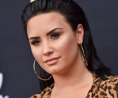 Demi Lovato Wants You To Leave Halsey and Her Armpit Hair Alone