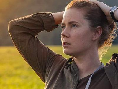 'Finding the Mother Tree': Amy Adams to Play Scientist Who Discovered How Trees Communicate