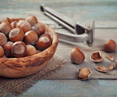 A guide to growing hazelnuts in New Zealand