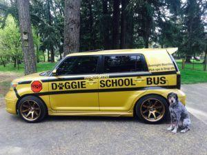 The Doggy School Bus Takes Dogs On Play Dates Thanks To Kind Soul