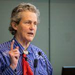 Temple Grandin on Looking through the Eyes of Animals