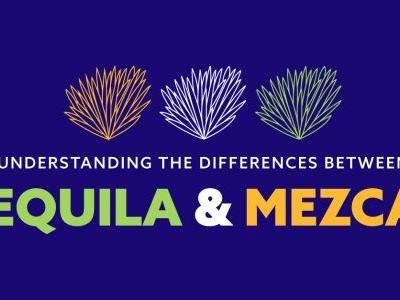 Understanding the Differences Between Tequila and Mezcal