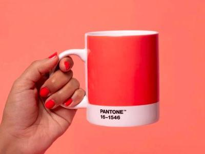 Living Coral: Pantone 2019 Colour of the Year embodies the need for optimism