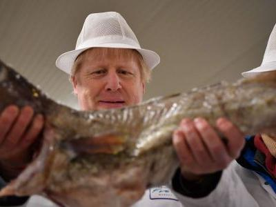 Britain and the EU's historic Brexit trade deal leaves the fishing industry in the dark, and the service sector in limbo, experts warn