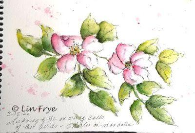 Journal - Still working with my soluble pen and watercolor