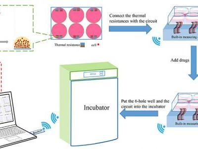 Wireless thermometry for real-time temperature recording on thousand-cell level