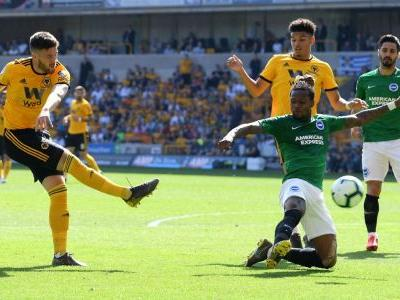 Battling Brighton secure vital draw at Wolves