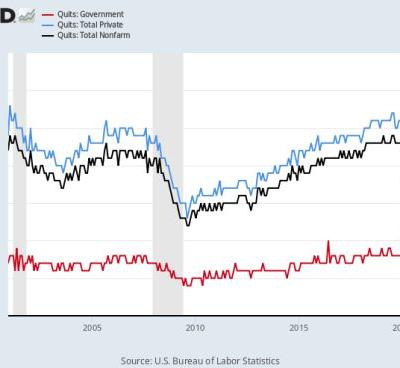 Quits in the private sector vs. quits in government: A data story of a segmented labor market