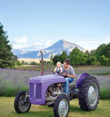 What to look for if you're buying a second-hand tractor