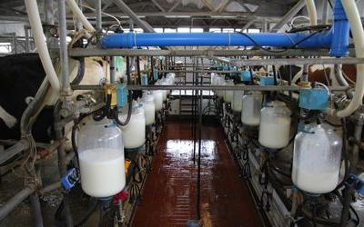 Federal court orders remedial action by Minnesota's Meech Dairy