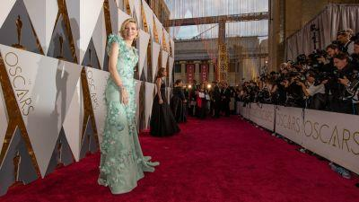 Every Look From the 2017 Oscars Red Carpet