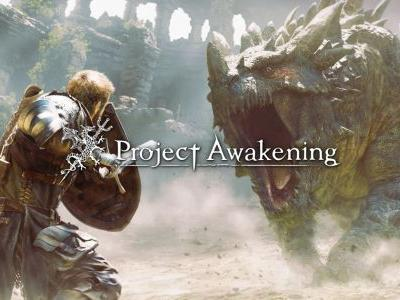 Project Awakening: Arise Rated By Korean Ratings Board