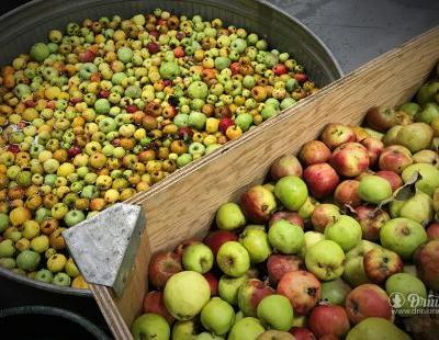 Portland Cider Co. Invites You To Turn Apples Into Charity
