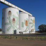 Bird art on grain silos