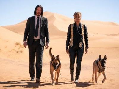 New John Wick 3 Trailer Has Halle Berry's Dogs Going For The Crotch