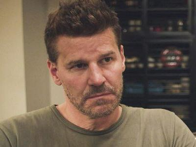 SEAL Team Spoilers: David Boreanaz Explains The Huge Tragedy's Impact On Season 2
