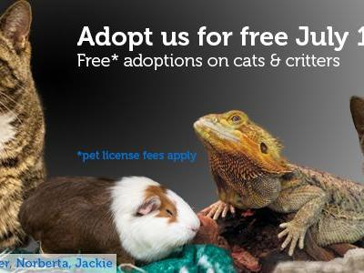 Adopt a cat or critter for free July 18-22