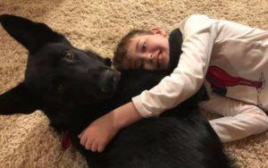 Trucker Drives 2,300 Miles To Reunite 8-Year-Old Cancer Patient With His Dog