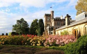 Larnach Castle is flocked with more than 1000 tourists as cruise tourism is on bloom