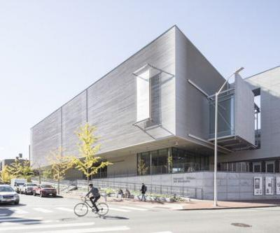 Renzo Piano's Renovation of the Harvard Art Museums is, Years On, a Quiet, Neighbourly Triumph