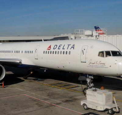 A dog died during a Delta flight and its owner is accusing the airline of attempting a cover-up