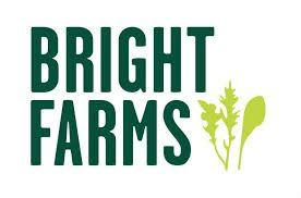 BrightFarms recalls packaged salads, herbs for E. coli risk