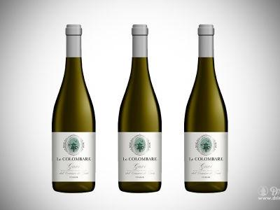 Gavi Le Colombare: Great Grapes equals Great Gavi