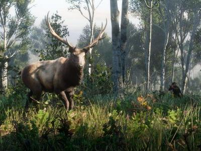 Red Dead Redemption 2 Legendary Animals, Train Tickets and Hitchhiking Detailed