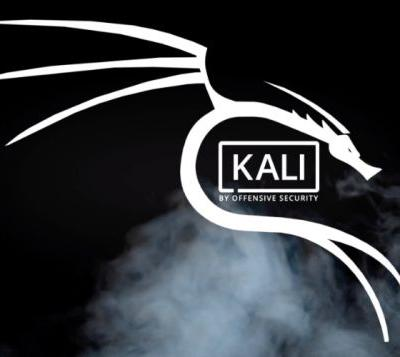 Kali Linux 2019.1 security OS released
