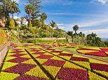 Why Portugal's Atlantic island of Madeira may be the tropical garden capital of Europe