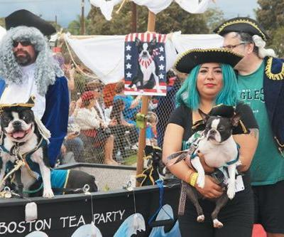8 Halloween Pet Parades You Can't Miss