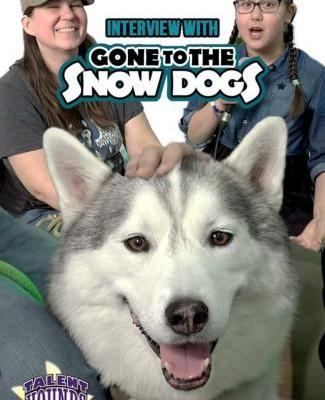 Do Huskies Make Good Pets? Gone to the Snow Dogs Interview