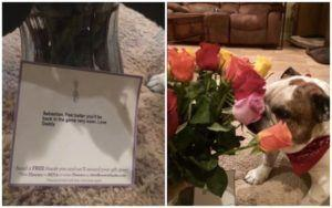 Wife Receives Flowers From Her Husband, Then Realizes They're For The Dog