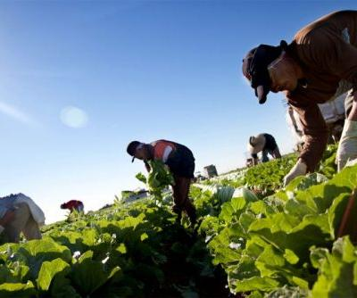 Climate Change-Fueled Valley Fever is Hitting Farmworkers Hard