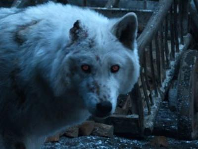 Why Game Of Thrones Didn't Make Jon Snow Pet Ghost Goodbye