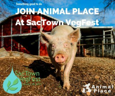 Remember to stop by Animal Place's table at SacTown