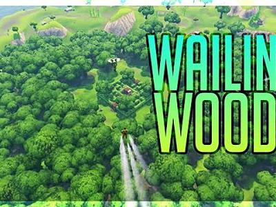 Fortnite Map Guide: Wailing Woods Chest Locations