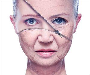 Stem Cells from Fat Cells May Help Reverse Aging
