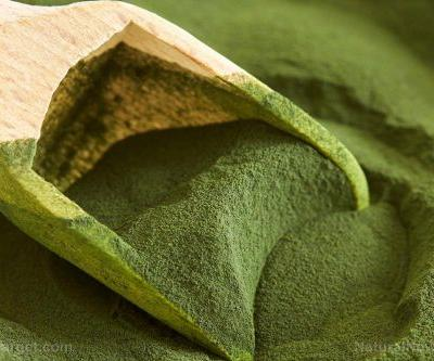 Chlorella: A powerful medicinal plant that can prevent inflammation-related diseases, researchers find