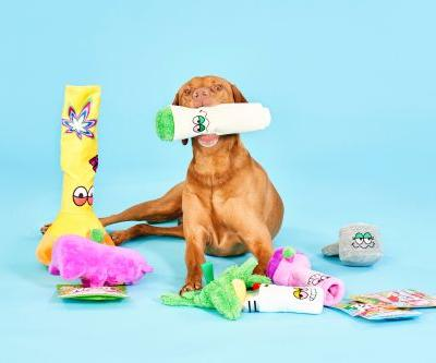 This Bud Hounds BarkBox For April 2021 Is Filled With Weed-Themed Dog Toys
