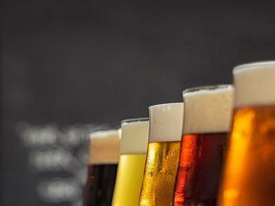 How to Start a Brewery: Growing Your Own Craft Beer Business