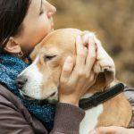 7 Things Not to Say When a Friend's Pet Crosses the Rainbow Bridge