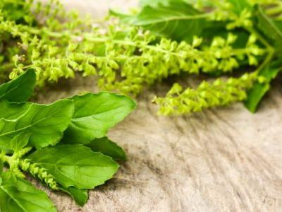 7 Adaptogenic Herbs or Adaptogens that Help Reduce Stress